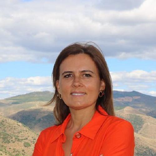 Aida Carvalho