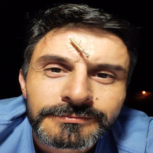 José Manuel Grosso-Silva