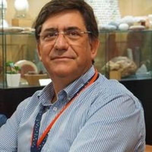 António Saraiva Lopes