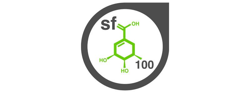ShikiFactory100